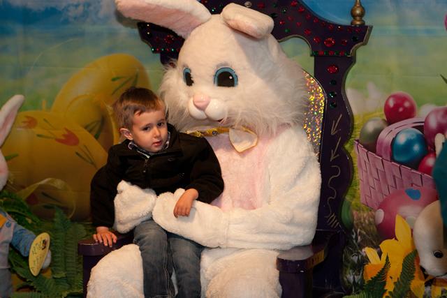 Zoo_Bunny-6x640